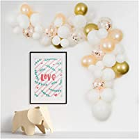 PapaKit Deluxe DIY Balloon Garland Set | 70 pc Assorted Balloons (12ft) | Decorating Strip, Glue Dots, Tying Tool | Wedding Bridal Baby Shower Party Decoration (Sparkling Champagne Blush)