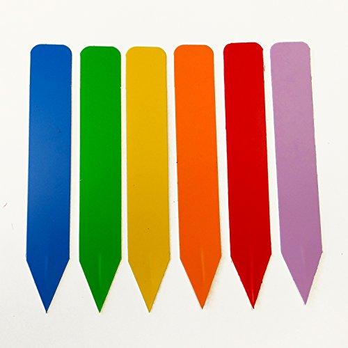 Color Plant Labels - Pack