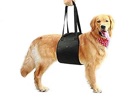 Mitefu Arnés de apoyo para la rehabilitación de perros, ayuda para levantamiento de pesas,