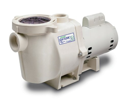 Sea Flow 2 HP Pump by Sea Flow Pump