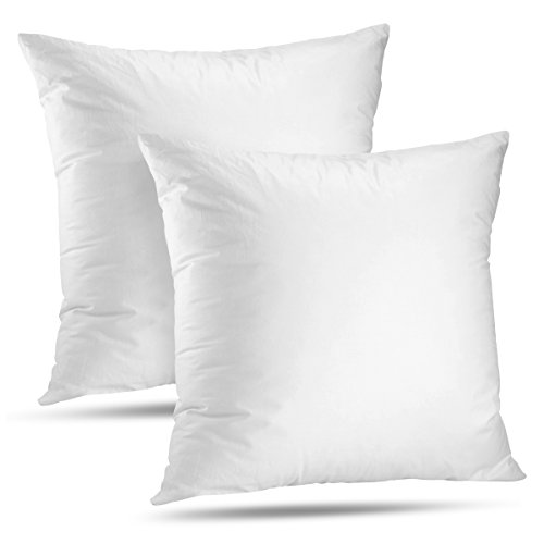LuxyFluff Faux down, Synthetic Down, Square Decorative Throw Pillow Insert, Sham Stuffer, 20'' X 20'' - Set of 16 by LuxyFluff