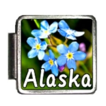 Alaska State Flower Forget-Me-Not Photo Italian Charm Bracelet (Photo Italian Charm Bracelet Link)