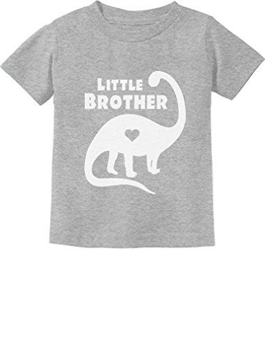 Little Brother Gift for Dinosaur Loving Boys Toddler/Infant Kids T-Shirt 4T Gray - Little Brother Dinosaur