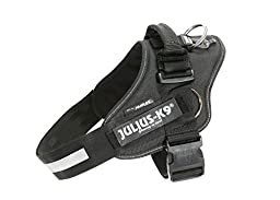 JULIUS-K9   IDC-Powerharness with siderings   Size: 2   Black