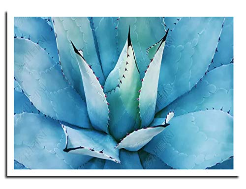 (Chicicio Blue Agave Leaves Wall Decor Canvas Wall Art Prints Pictures for Living Room Painting Plants Poster House Bathroom Decorations Stretched and Framed Artwork Ready to Hang(20x28inches))
