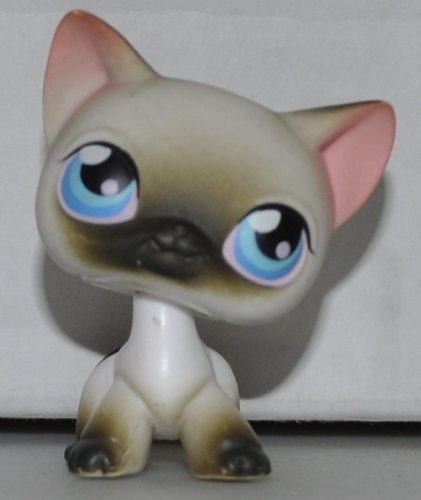 Shorthair Cat #5 (White, Brown Tips (Siamese) Littlest Pet Shop (Retired) Collector Toy - LPS Collectible Replacement Single Figure - Loose (OOP Out of Package & Print) (Littlest Pet Shop Brown Cat)