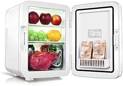YQQ Caja Fría Portátil Refrigerador del Coche 10L Caja De ...