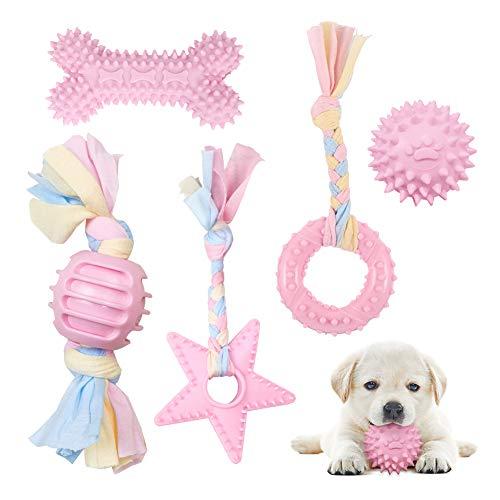 Hundespielzeug Seil mit Ball, 5 Stück Welpen Spielzeug für Hunde Zahnpflege, Kauen Hundespielzeug Set für Kleine…