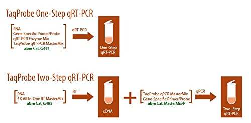 One-Step taqprobe qrt-pcr-rox: Amazon.es: Amazon.es