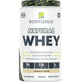 bodylogix protein shake