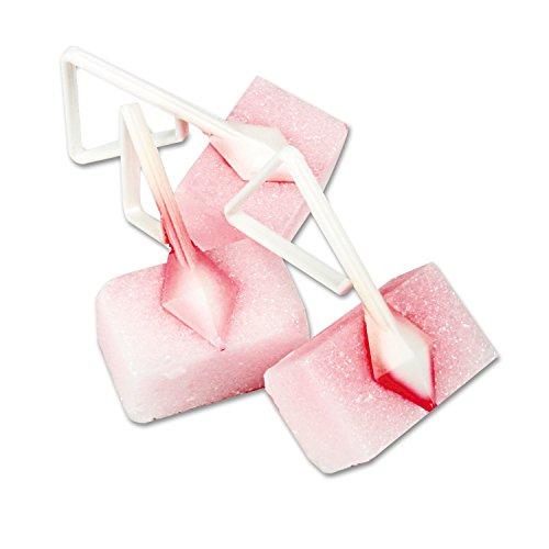 Fresh Products Bowl Blocks - Fresh Products Toilet Bowl Blocks, Cherry, Solid, 4oz, 12/Box, New
