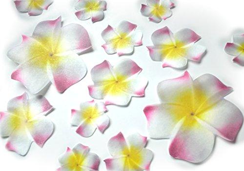15 Plumeria Flower Flat Edible Wafer Paper Flowers Small Medium