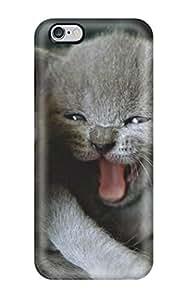 For Iphone 6 Plus Fashion Design Newborn Cats Cat Animal Cat Case-agLPdFf31451ajtKa