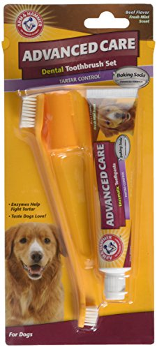 Flavor Dog Dental Kit - Arm & Hammer Dog Dental Care Tartar Control Kit for Dogs | Contains Toothpaste, Toothbrush & Fingerbrush | Reduces Plaque & Tartar Buildup | Safe for Puppies, 3-Piece Kit, Beef Flavor