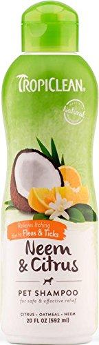 TropiClean Neem Citrus Shampoo 20oz product image