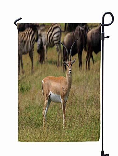 Shorping Welcome Garden Flag, 12x18Inch Male Gazelle Buck for Holiday and Seasonal Double-Sided Printing Yards Flags -
