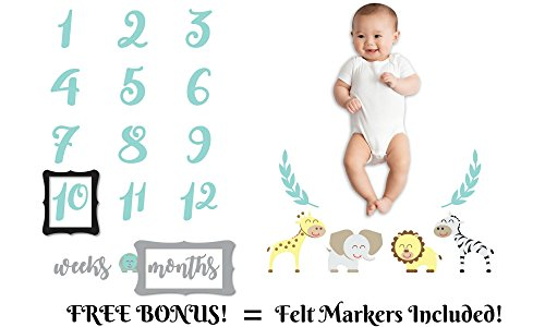 Premium Baby Milestone Monthly Blanket - Neutral Unisex Newborn Colors Super Soft Large 60