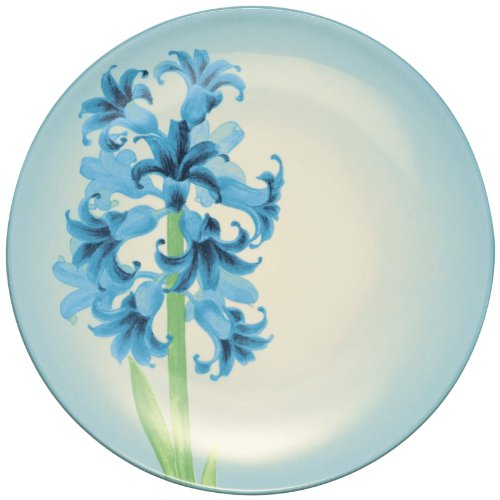 Noritake Colorwave Hyacinth Accent Plate, (Colorwave Accent)