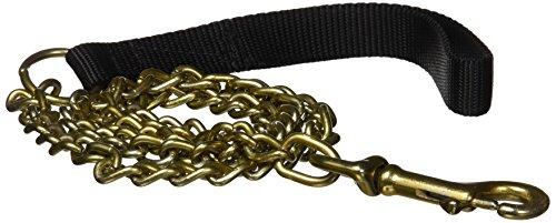 (Platinum Pets 3mm Coated Chain Dog Leash with Nylon Handle, Corona Lime)