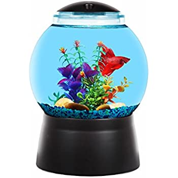 Classic gumball machine fishbowl aquarium for Gumball fish tank