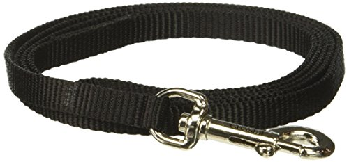 4' Collar (Coastal Pet Products DCP304Black Nylon Collar Lead for Pets, 3/8-Inch by 4-Feet, Black)