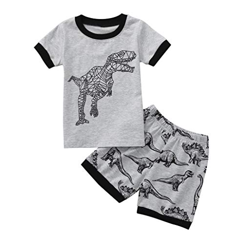 Hot Sale! Toddler Kids Baby Boys Dinosaur Pajamas Cartoon Print T Shirt Tops Shorts Outfits Set (Dark Gray, 3T)