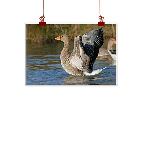 duommhome Art Oil Paintings Bird Bath - Greylag Geese (Anser anser) Home and Everything 32