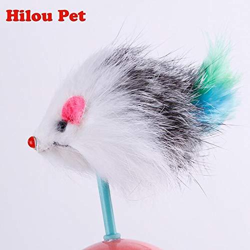 Amazon.com : Best Quality Durable cat Toys Mimi Favorite Fur Mouse Tumbler Plastic Toys Balls for Cats Dogs Play 5.5cm : Pet Supplies