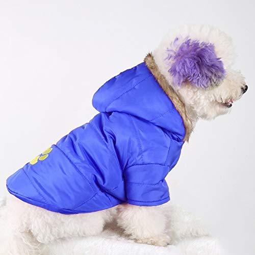 Animale domestico Bella abbastanza bella moda confortevole Nuovo cane ricamato dell'animale domestico di stile di autunno e di inverno ispira l'indumento caldo del cotone Formato  S, busto  38-43cm, c