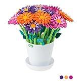 Vigar 11510 Flower Power-Pen Flower Pot