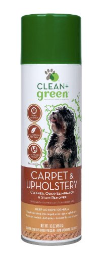 clean-green-carpet-and-upholstery-pet-odor-eliminator-and-stain-remover-for-dogs