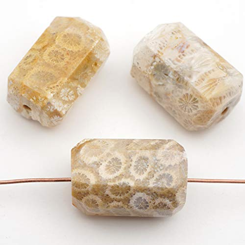 (3 Pcs Faceted Cylindrical Light Brown Fossil Coral Beads Avg Size)