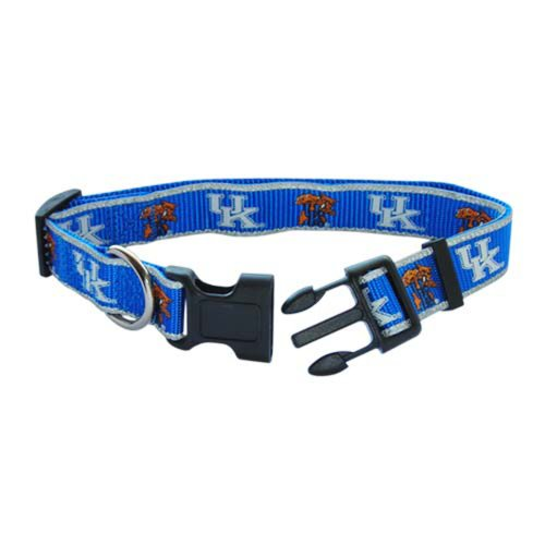 Pet Goods Small Collegiate 5/8-Inch by 10-Inch - 14-Inch Dog Collar, University of Kentucky