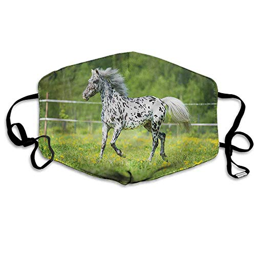 Horse Fashion Mouth Mask Running Appaloosa Stallion for Cycling Camping Travel W4