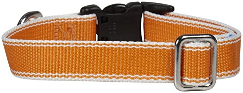 "Stripe Hype Dog Collar Size: Small (10"" H x 16"" W x 0.63"" L), Color: Tangerine"