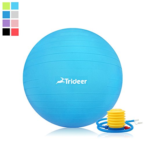 Exercise Ball, Yoga Pilate Fitness Balance Ball with Pump Plug Kit, Anti-Slip & Anti-Burst, 2000lbs Extra Thick Core Cross Training Ball, Desk Chair for Office and Home (Light Blue, 65cm)