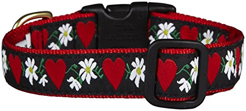 Image of Up Country Hearts & Flowers Dog Collar - Small