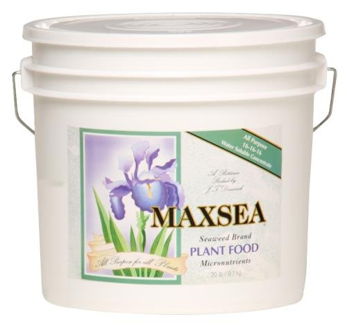 Maxsea All Purpose Plant Food 16 - 16 - 16
