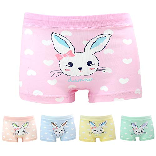Allmeingeld Girls Rabbit Panties Bunny Boyshort Cotton Underwear 5 Pack for 1-13 Years