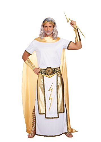 Dreamgirl Men's Zeus Costume, White/Gold, Large (Greek Gods Costumes For Adults)