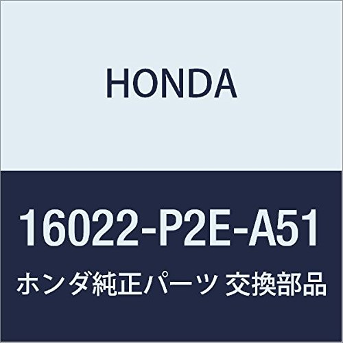 Genuine Honda 16022-P2E-A51 Rotary Air Control Valve Set