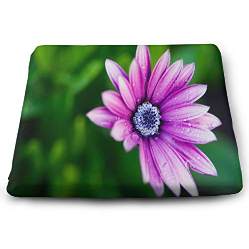 Seat Cushion Daisy Flower Purple Chair Cushion Designer Offices Butt Chair Pads for Outdoors