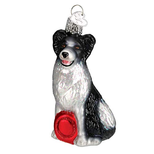 - Old World Christmas Ornaments: Border Collie Glass Blown Ornaments for Christmas Tree (12302)
