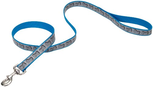Lazer Brite Reflective Leash, 5/8