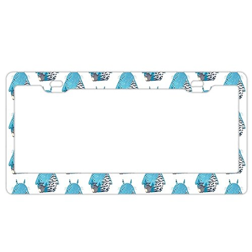 totoro license plate frame buyer's guide for 2019