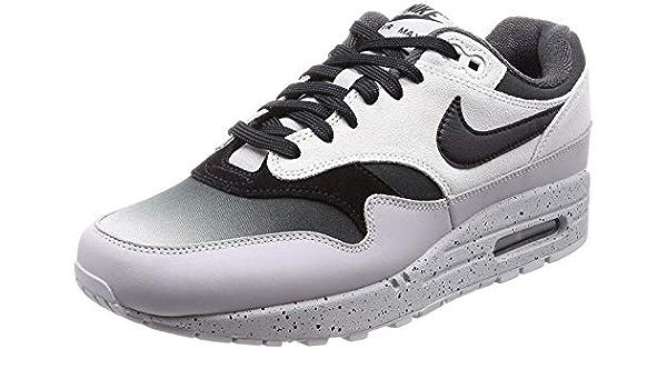 Amazon.com   Nike Mens Air Max 1 Premium Pure Platinum/Black-Wolf ...