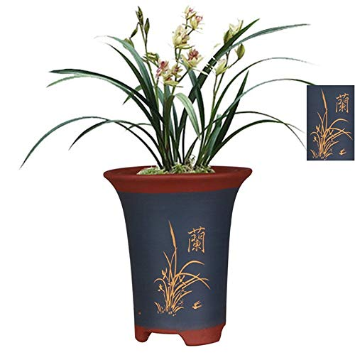 Fine Purple Sand Flower Pot, High-Grade Plant Pot, Orchid Carving + Chinese Character Pot Body Pattern Design, Indoor/Outdoor, Blue, Breathable/Absorbent/Moisture Absorption, Two Sizes Can Choos