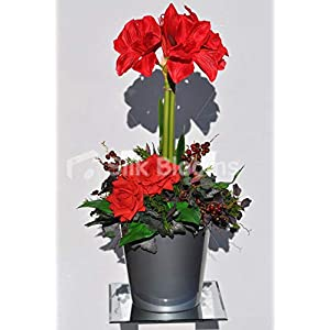 Silk Blooms Ltd Artificial Red Fresh Touch Amaryllis Floral Arrangement w/Roses and Berries 87