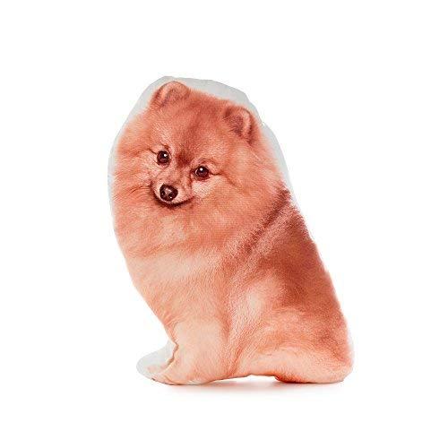 Cushion Co - Pomeranian Pillow 16