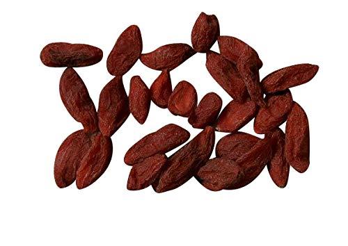 110 Goji Berry Seeds Lycium Chinense Easy